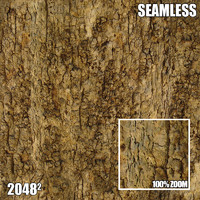 2048 Seamless Bark Texture