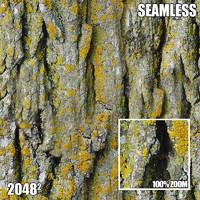 2048 Seamless Bark Texture IX