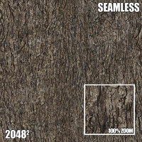 2048 Seamless Bark Texture XII