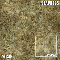 2048 Seamless Bark Texture IV
