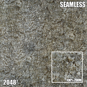 2048 Seamless Bark Texture VII