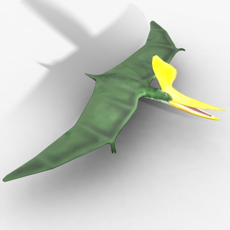 3d rigged pterosaur
