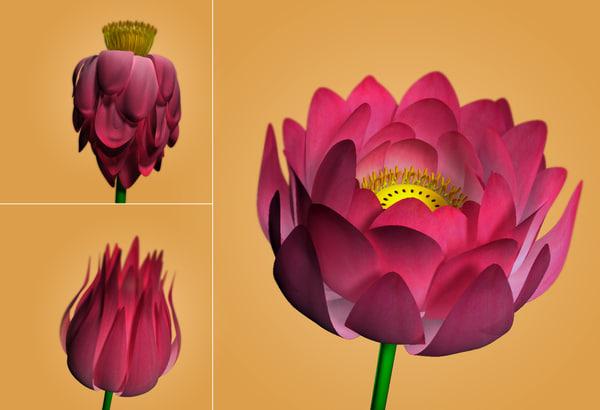 free ma model flower rig