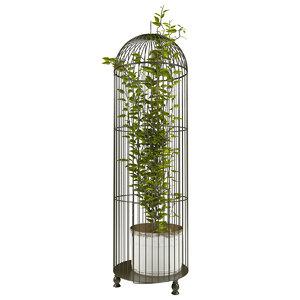 ivy cage obj