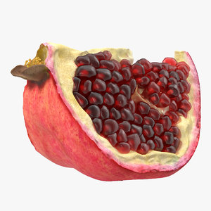3d 3ds pomegranate slice 3