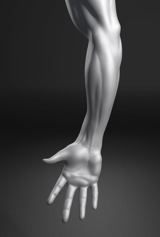 male arm max