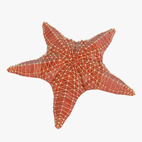 star starfish obj