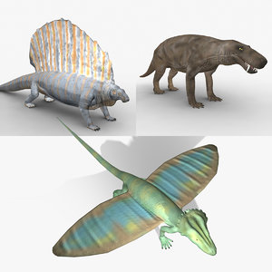 3d rigged animals permian