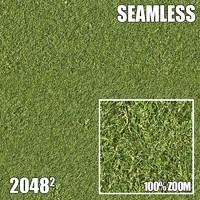 2048 Seamless Dirt/Grass 11