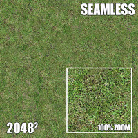 2048 Seamless Dirt/Grass 12