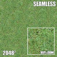 2048 Seamless Dirt/Grass 14