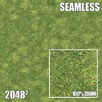 2048 Seamless Dirt/Grass 15