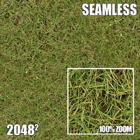 2048 Seamless Dirt/Grass 26