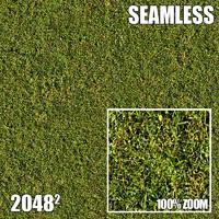 2048 Seamless Dirt/Grass 29
