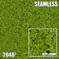2048 Seamless Dirt/Grass 38