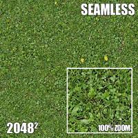 2048 Seamless Dirt/Grass 41
