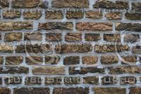 Wall_Texture_0068