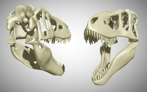 tarbosaurus bataar max