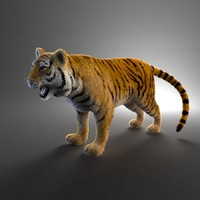 tiger fur 3ds