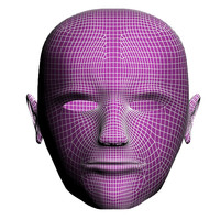3d model of man face structure
