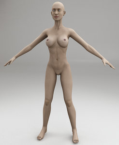 female body max