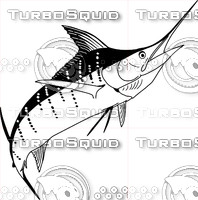 Vector Sailfish