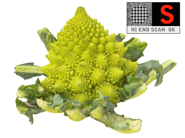 3d romanesco broccoli ultra hd model