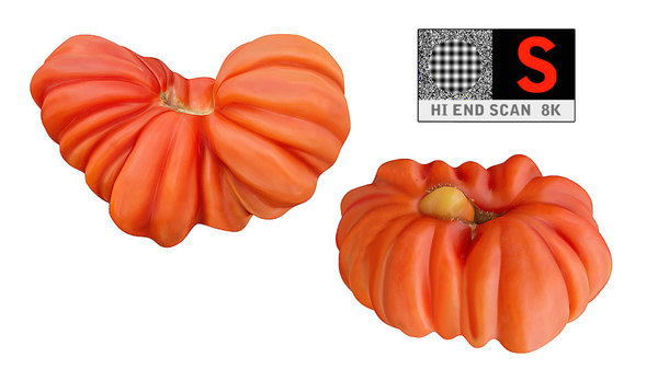 3d tomato scanned 8k packing model