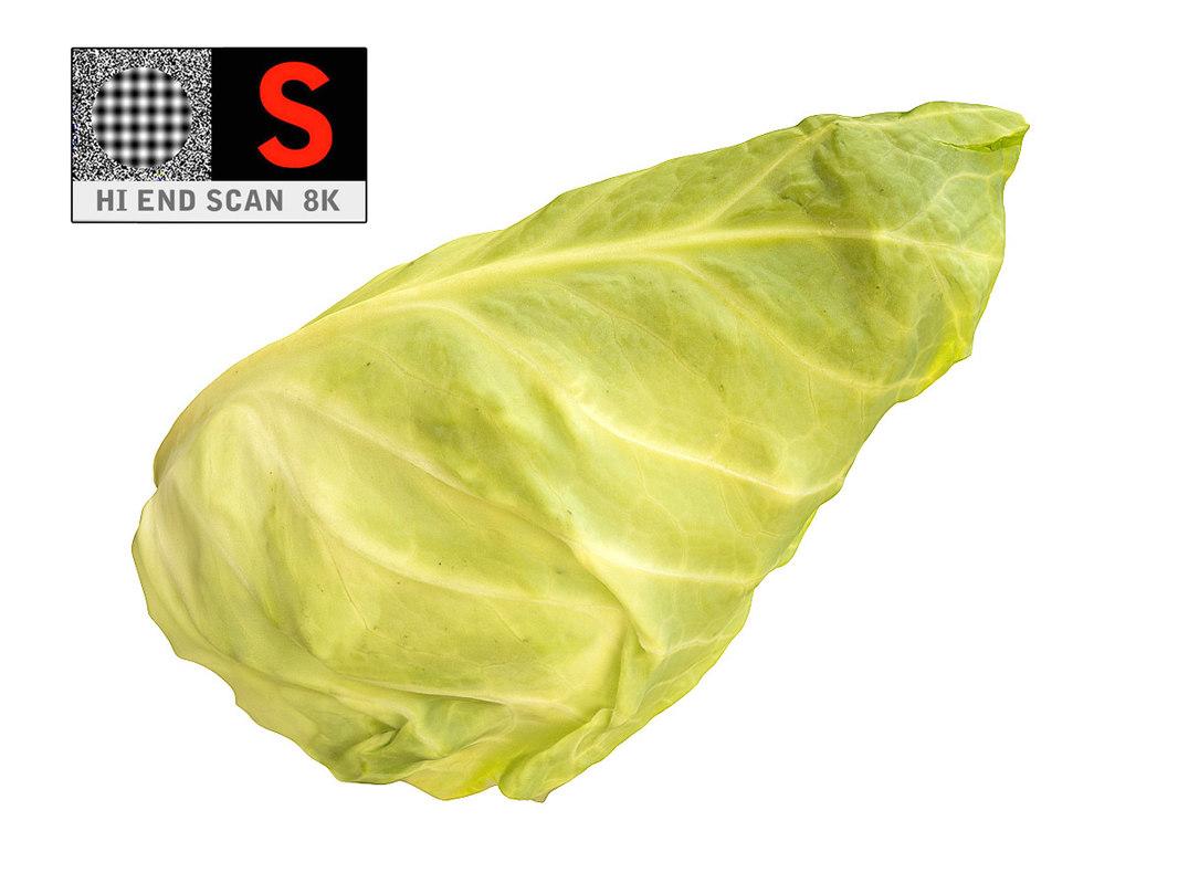 3d model lettuce 8k