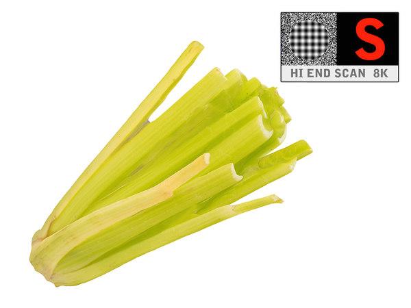 celery 8k 3d model