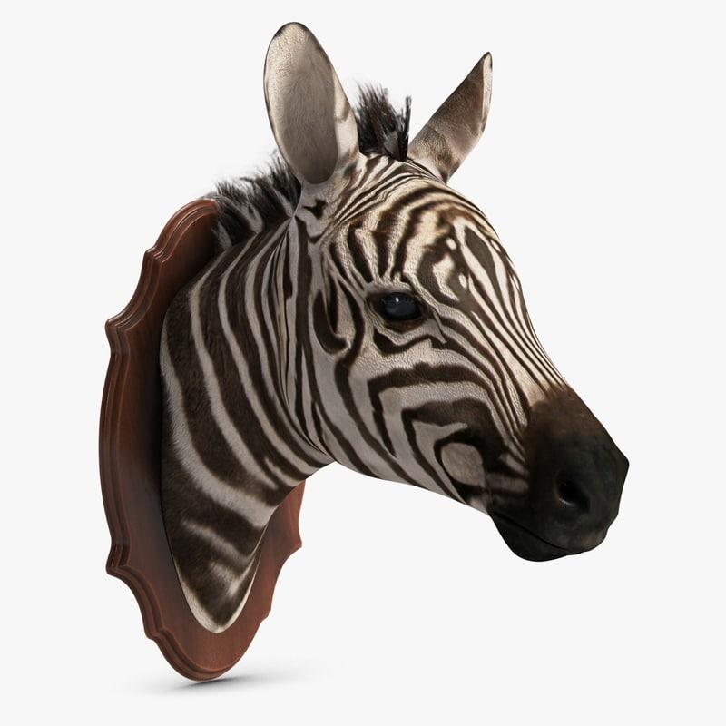 zebra head trophy 3d model
