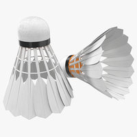 shuttlecock modeled field 3d 3ds