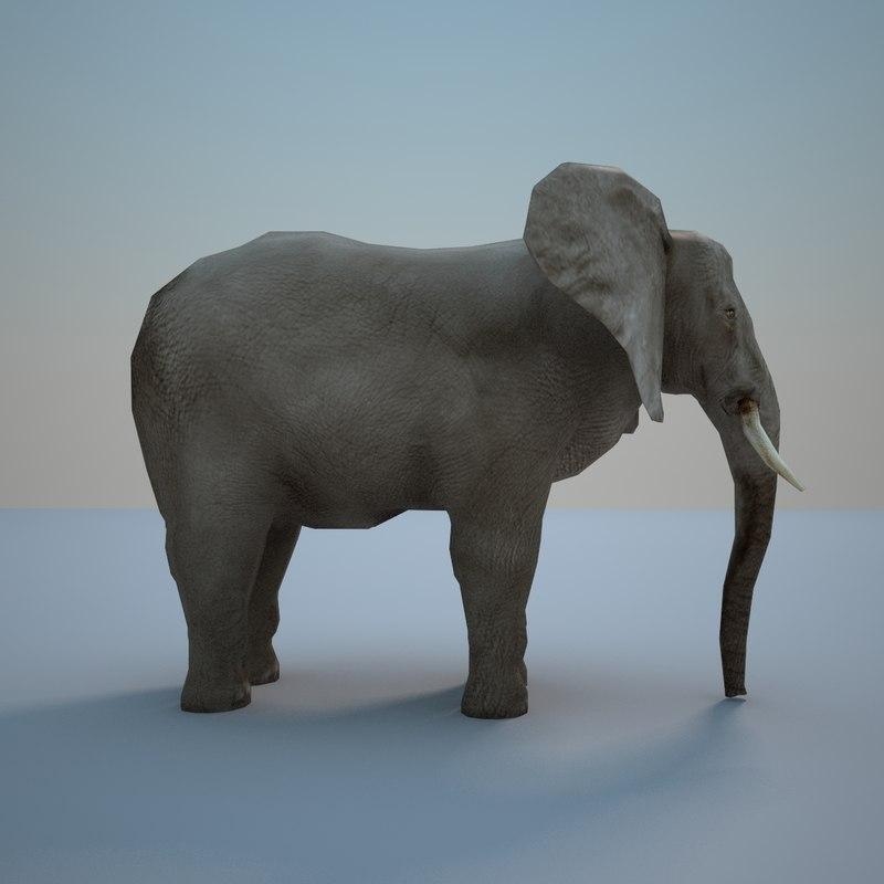 maya elephant