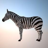 zebra 3d max