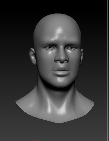 bust african male 3d model