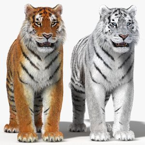 tiger fur color 3d 3ds