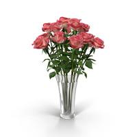Rose(1)