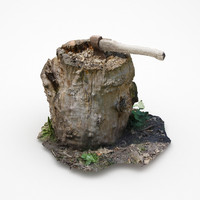 3d model tree stump scan