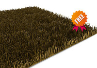 free carpet modelled 3d model