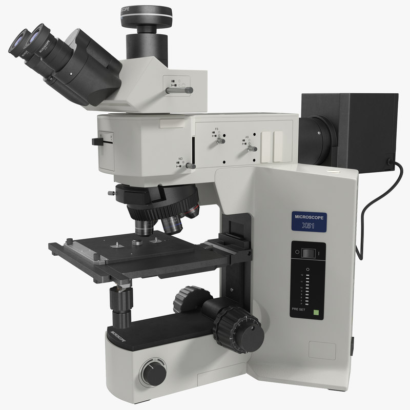 3d professional fluorescence microscope generic model