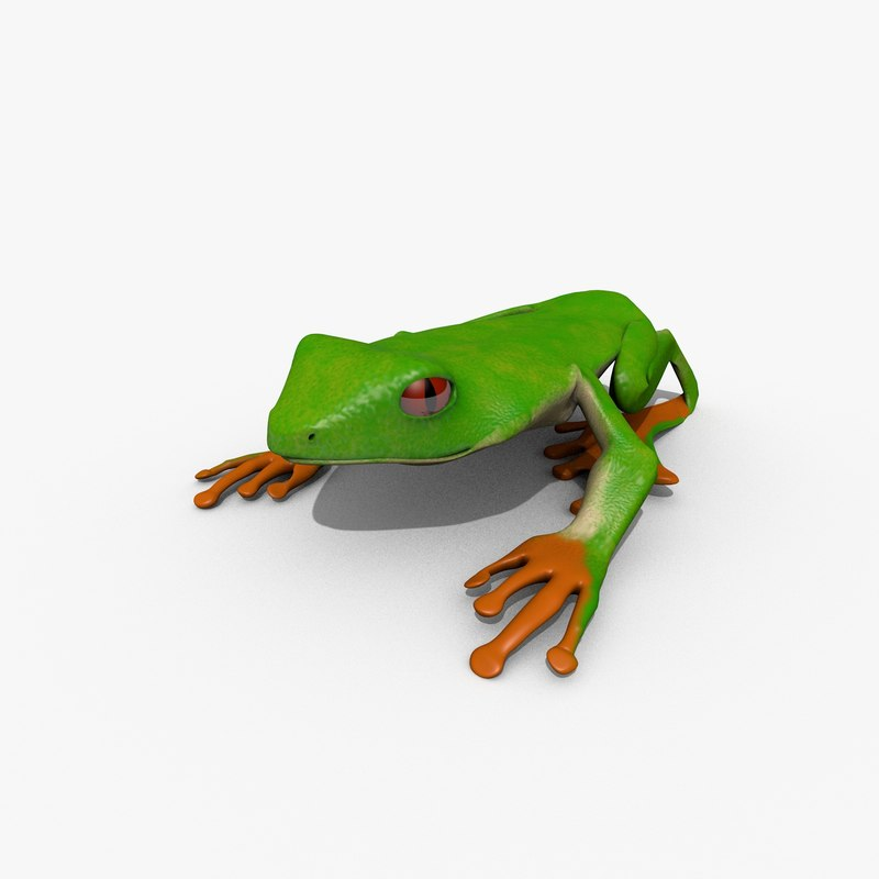 3d model red eyed tree frog