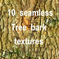 Tree Bark Collection 11