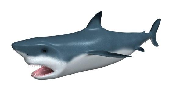 maya sharks fish