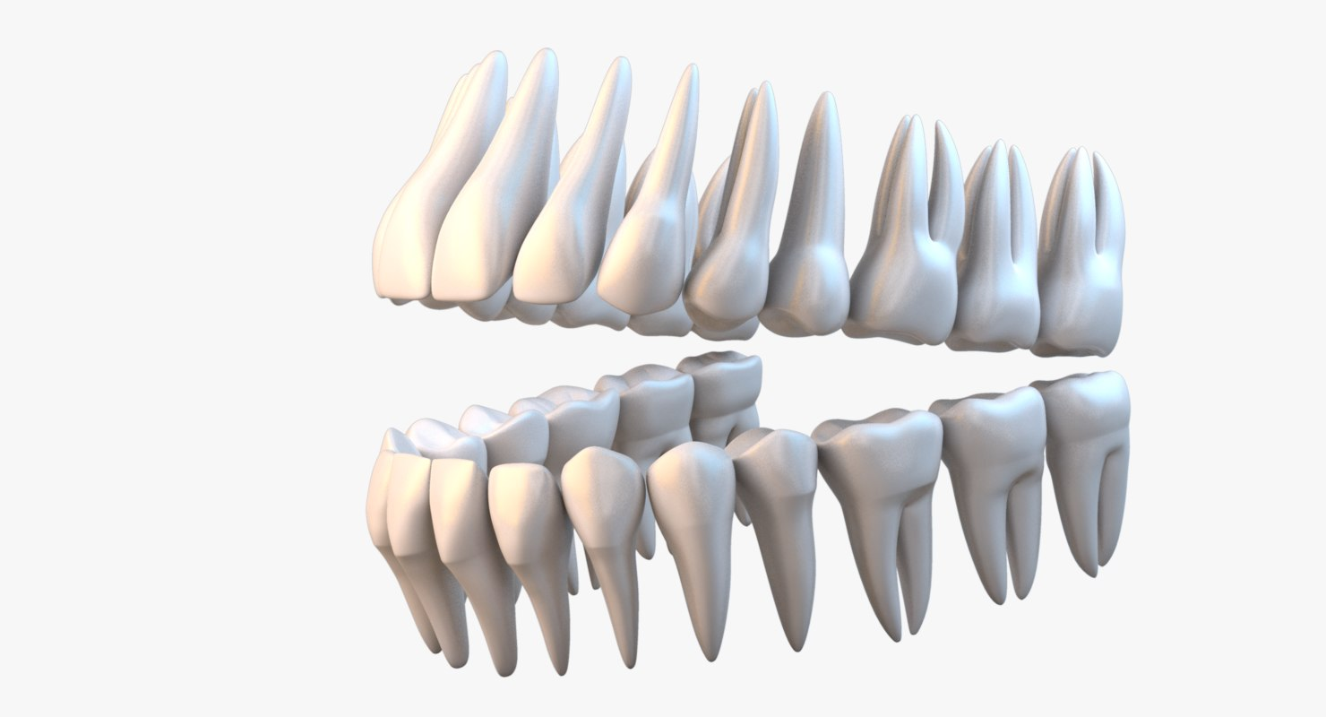 maya teeth realistic