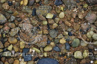 Pebbles_Texture_0001