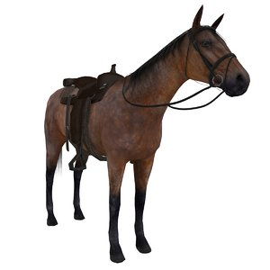 3d wild west horse saddle