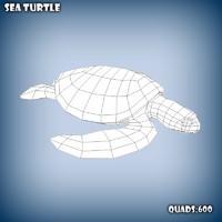 base mesh sea turtle 3d fbx