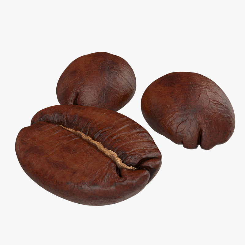 roasted coffee bean 3d model