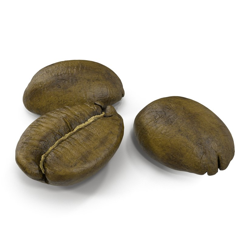 roasted green coffee bean 3d max