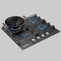 Samsung Gas Cooktop 2015 and WOK